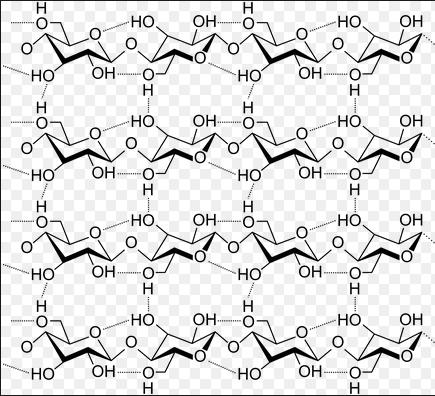 क्या होता है सेल्यूलोस फाइबर cellulose fiber ?